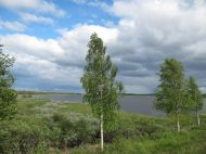 image500